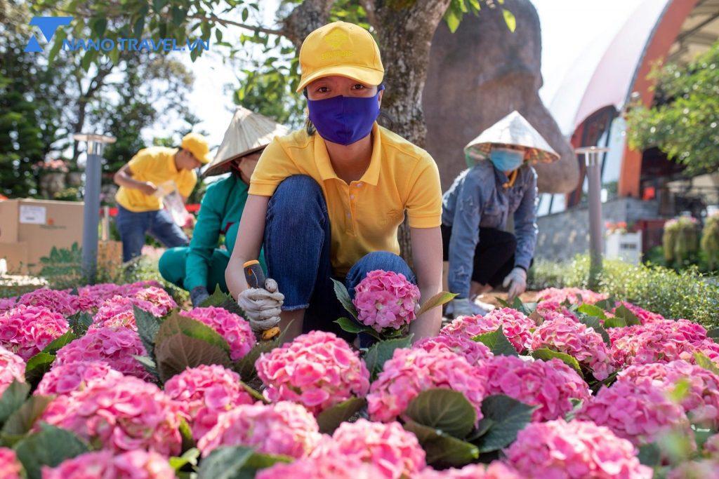 Nhân viên Bà nà hill chăm sóc cây xanh trong mùa dịch